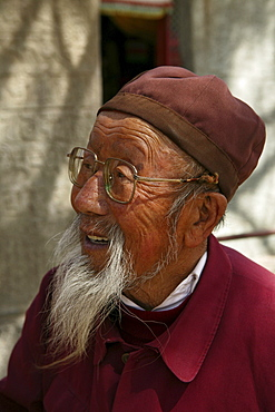 Elderly bearded monk with glasses, Taihuai, Mount Wutai, Wutai Shan, Five Terrace Mountain, Buddhist Centre, town of Taihuai, Shanxi province, China