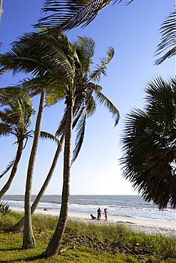 Beach in Naples, Florida, USA