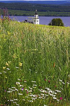 View over meadow with church tower of Alsen at the Alsensjoen, Jaemtland, northern Sweden