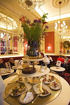 Vienna Austria Cafe Sacher interieur