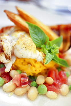 Florida Spiny Lobster tail with saffron linguini tomatoes basil white beans english peas prosciutto and roasted garlic crostini, Restaurant Mark's South Beach, South Beach, Miami, Florida, USA