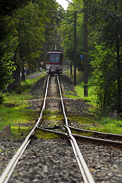 A train track running through the forest, Gotha Waldbahn, Tabarz, Thuringia, Germany