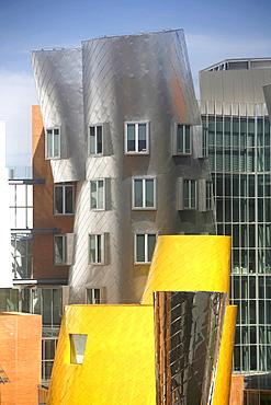 Modern architechture, Frank Gehrys Ray and Maria Stata Building, MIT, Cambridge, Massachusetts, USA