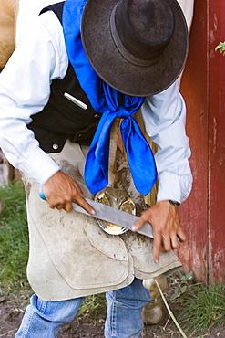 horseshoeing in wildwest Oregon, USA