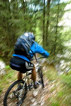 Mountainbiking in woods, Slovenia