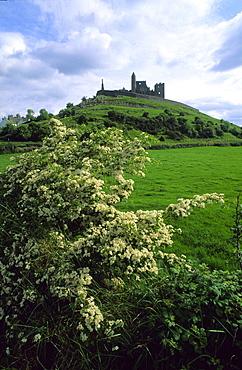 Rock of Cashel near Cahir, Cashel of the Kings, County Tipperary, Ireland, Europe