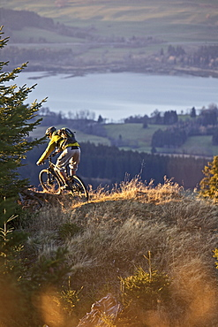 Mountainbiker riding on a trail in the Alps, Alpspitz, Bavaria, Germany, Europe