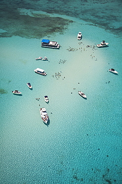 Aerial view of Stingray City sand bank with excursion boats and people swimming, Grand Cayman, Cayman Islands, Caribbean