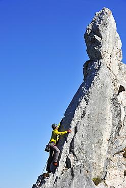 Young man climbing at pinnacle, Kampenwand, Chiemgau Alps, Chiemgau, Upper Bavaria, Bavaria, Germany