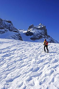 Woman backcountry skiing, ascending towards Kleine Sulzfluh, backcountry ski tour Sulzfluh, Rachen, Raetikon, Montafon, Vorarlberg, Austria