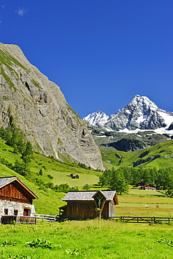Alpine huts in front of Grossglockner, Luckneralm, Grossglockner, National Park Hohe Tauern, East Tyrol, Austria
