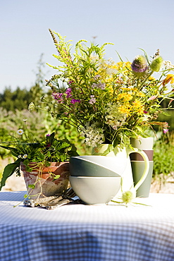 Fresh herbs in the garden, herbage, garden, Homegrown