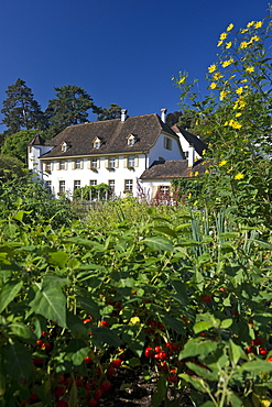 Houses at Merian Park, Brueglingen, Basel, Switzerland, Europe