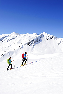 Two backcountry skiers ascending to Brechhorn, Grosser Rettenstein in background, Kitzbuehel Alps, Tyrol, Austria