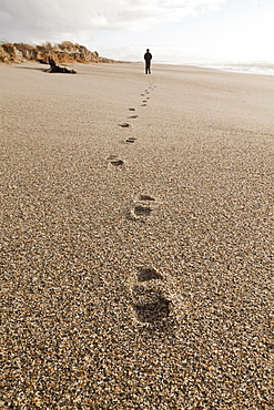 Footprints in coarse sand, person walking along the beach, autumn, South Island, New Zealand