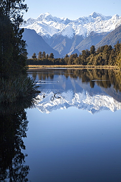 Perfect mountain reflections at Lake Matheson, Southern Alps with Mount Tasman and Mount Cook, Aoraki, South Island, New Zealand