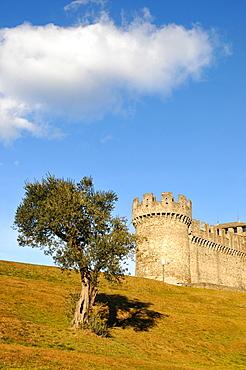 Montebello Castle, Castello di Montebello, Bellinzona, Ticino, Switzerland