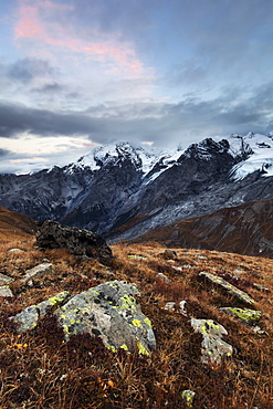 An impressive view towards the Ortler Alps from a mountain meadow above the Stelvio Pass on an autumn evening, South Tyrol, Italy