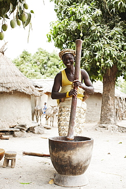 Woman carrying child on back grinding corn to flour, Magadala, Mali