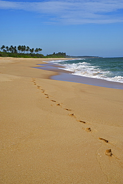 Footprints in the sand along a long deserted beach east of Tangalle, South coast, Sri Lanka, South Asi