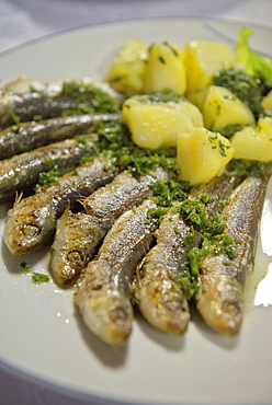 Grilled sardines with potatoe dish, Adria coast, Mediterranean Sea, Primorska, Slovenia