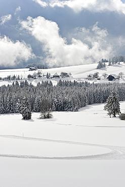 Landscape near Breitnau, near Hinterzarten, Black Forest, Baden-Wuerttemberg, Germany