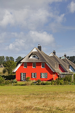 Modern house with thatched roof, Ahrenshoop, Mecklenburg-Western Pomerania, Germany