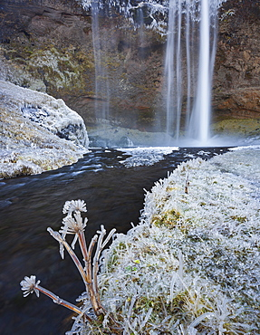 Ice and frost at the Seljalandsfoss waterfall, South Iceland, Iceland