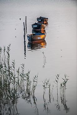 Sunset and fishing boats on the island of Ummanz, island of Ruegen, Mecklenburg-Western Pomerania, Germany