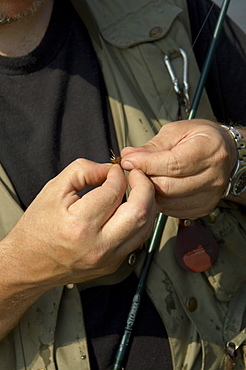Man Tying a Fly onto Rod for Fly Fishing