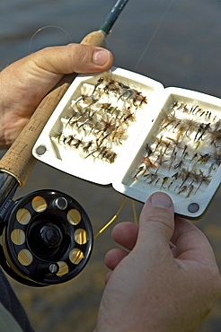 Fly Box, Fly Fishing