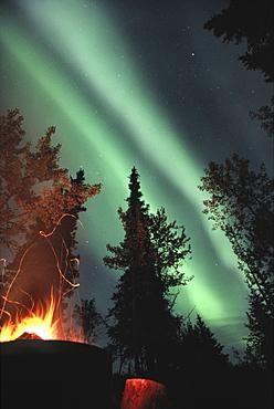 Campfire and Northern Lights, Yukon