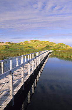 Bowley Pond Boardwalk, King's County, Greenwich Prince Edward Island.