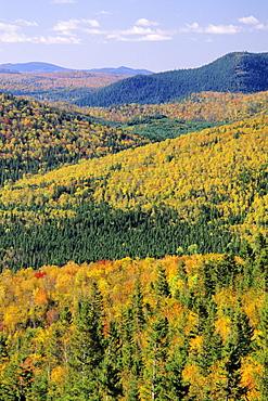 Mount Bailey overlook, Mount Carleton Provincial Park,New Brunswick.