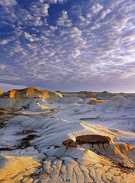Red Deer River Badlands, Dinosaur Provincial Park, Alberta, Canada