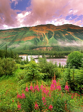 """North Saskatchewan River along the Icefields Parkway at the """"Avalanche Slope"""" lookout, Banff National Park, Alberta, Canada"""