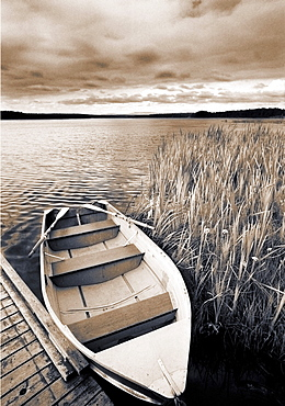 Boat and Reeds, Burntstick Lake, Alberta, Canada