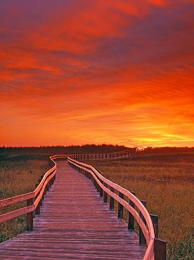 Boardwalk along the Salt Marsh, Kouchibouguac National Park, New Brunswick, Canada