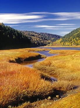 Upper Salmon River, Fundy National Park, New Brunswick, Canada