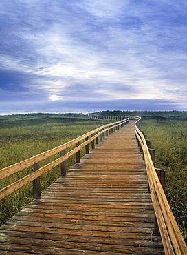 Boardwalk in Salt Marsh, Kouchibouguac National Park, New Brunswick