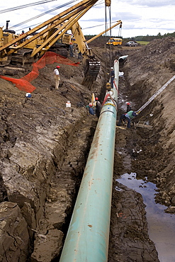 Pipeline Construction on a line running from Edmonton to the Oil Sands near Fort McMurray, Alberta