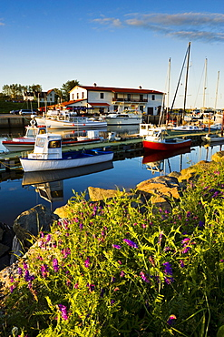 Marina and the Vieille Usine at sunset, L'Anse-a-Beaufils, Gaspesie, Quebec
