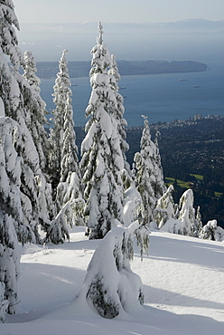 Grouse Mountain, Vancouver, British Columbia