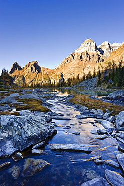 Opabin Plateau, River and Mount Huber with Mount Victoria, Yoho National Park, British Columbia