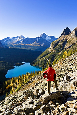 Hiker looking out at Lake O'Hara, Yoho National Park, British Columbia