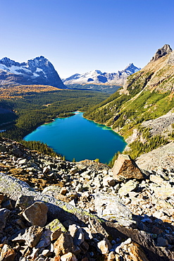 Artist's Choice: Lake O'Hara, Yoho National Park, British Columbia