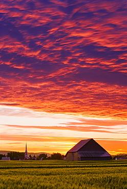 Barley fields, barn, church and colourful sky at dusk, Bas-Saint-Laurent region, Saint-Donat, Quebec