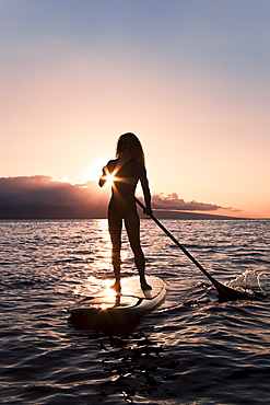 Hawaii, Maui, Woman stand up paddling in ocean just off Canoe Beach, Silhouette at sunset.