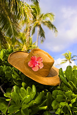 Hawaii, Oahu, Lanikai, Still life of straw hat with hibiscus.