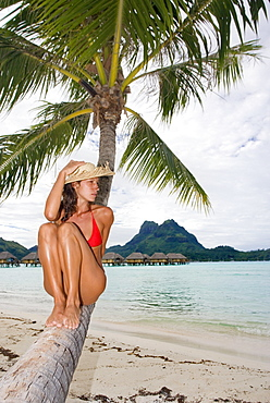 French Polynesia, Bora Bora, Young woman sitting on a palm tree with bungalows in the background.